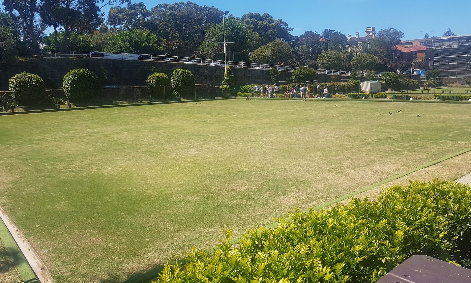 Contact Coogee Beach Club Lawn Bowls Green